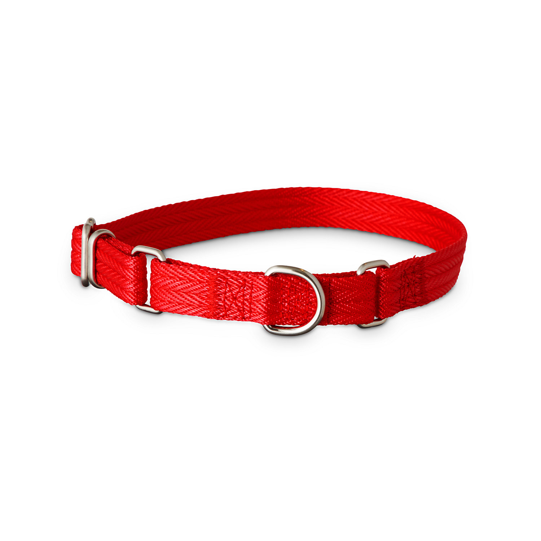 Good2Go Red Martingale Dog Collar