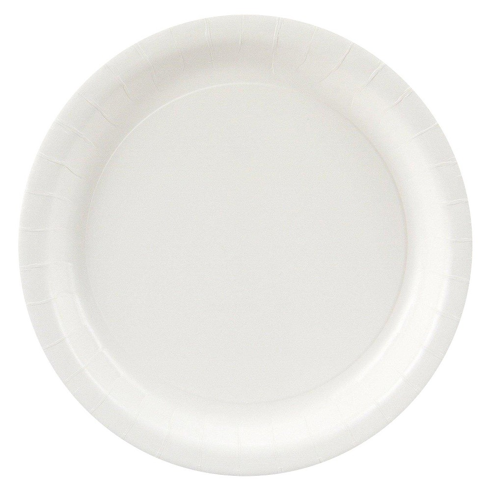 24ct White Dinner Plate, Disposable Dinnerware