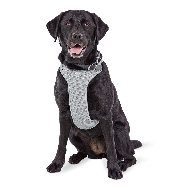Jubilee Gray Large Dog Harness